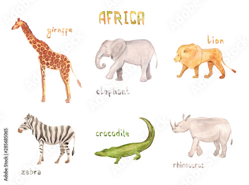 Watercolor hand drawn sketch illustrations of African animals with captions - gi Canvas Print