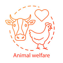 Animal Welfare, Shelter Concep...