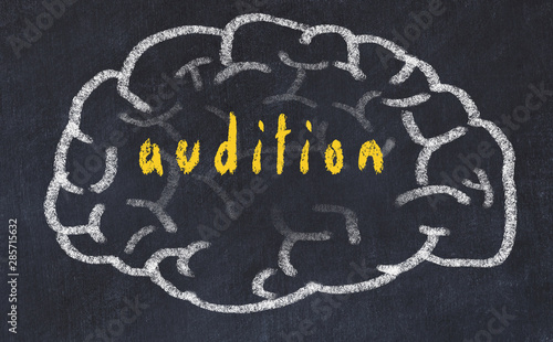 Drawind of human brain on chalkboard with inscription audition Wallpaper Mural