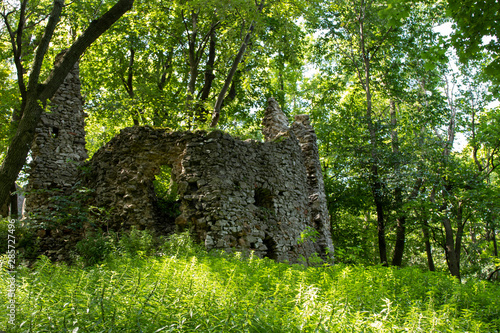 Fototapeta Ruins of the castle Ostry Kamen, Little Little Carpathian mountains (Slovakia) obraz