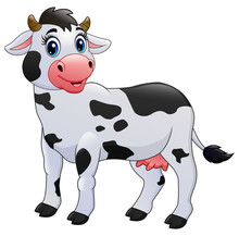 Cow Cartoon Isolated On White Background