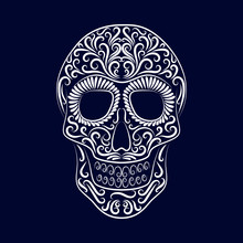 The Stylized Skull Is Drawn By A White Line From The Ornament On A Blue Background.