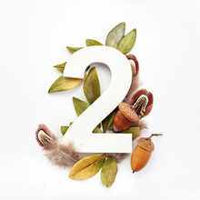 Autumn Concept. Number Two Shape With Autumn Leaves, Acorns And Fearhers. Nature Concept. Flat Lay. Top View