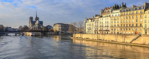 Notre Dame de Paris and the banks of the Seine River (Quai d'Orleans) in Summer. Ile Saint Louis and Ile de la Cite, 4th Arrondissement, Paris, France