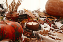 Pumpkin And Candle With Berries, Fall Leaves, Anise,herbs, Acorns, Nuts, Cinnamon, Cotton On Brown Blanket. Hygge Lifestyle, Autumn Mood. Happy Thanksgiving. Cozy Inspirational Image