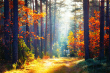 Autumn. Fall Forest Landscape