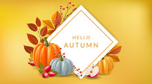 White Square Frame On Yellow Background With Autumn Plants, Pumpkin, Apple, Red Berry, And Fall Leaf. Vector Illustration For Thanksgiving, Autumn Sale Design Background With Simple Modern Design