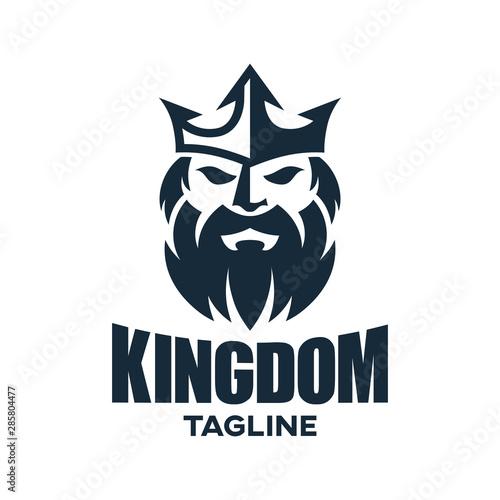 Photo Stands Owls cartoon Modern king and kingdom logo design.