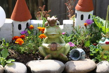 Decorative Princess Frog By The Pond In The Garden