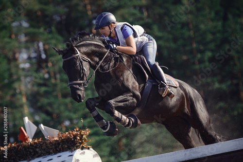 Cuadros en Lienzo  close portrait of attractive rider woman jumping over obstacle on black horse du