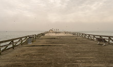 View Of Large Abandonned Pier With Birds Flying Around