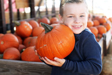Boy Holding Pumpkin In Pumpkin...