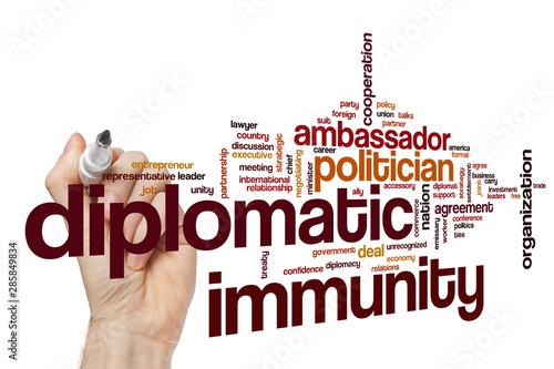 Diplomatic immunity word cloud Wallpaper Mural