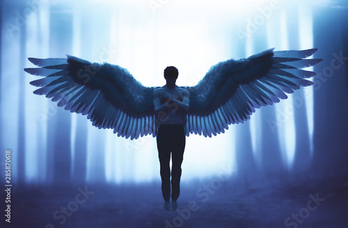 Photographie An angel in mystic forest,3d illustration