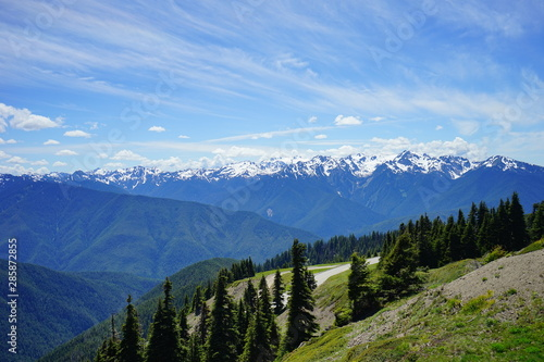 Beautiful snow capped mountains in Olympic National Park in summer in  Washington, near Seattle