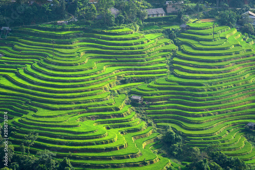 La pose en embrasure Les champs de riz Beautiful rice terrace fields in Sa Pa town the most popular travel destinations of Northern Vietnam