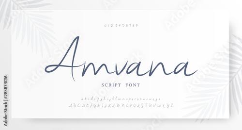 Fotografía  Elegant script alphabet letters font and number