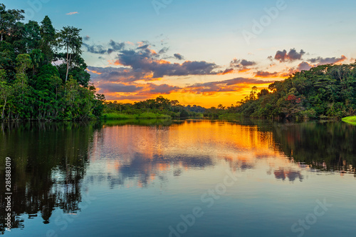 Foto op Aluminium Bomen Reflection of a sunset by a lagoon inside the Amazon Rainforest Basin. The Amazon river basin comprises the countries of Brazil, Bolivia, Colombia, Ecuador, Guyana, Suriname, Peru and Venezuela.
