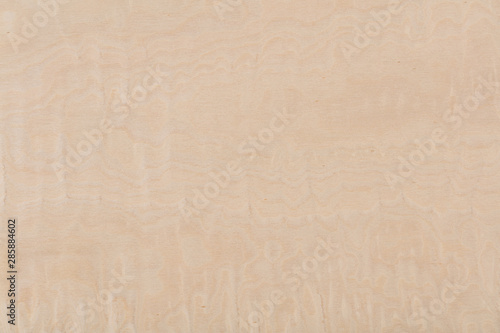 Foto auf Gartenposter Marmor New light beige maple veneer background as part of your design.