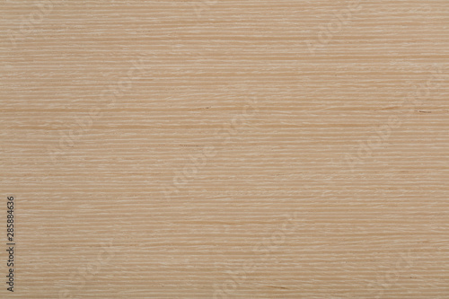 Natural light beige oak veneer background as part of your design