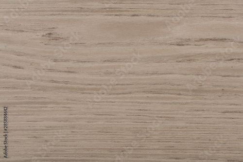 Foto auf Gartenposter Marmor Beautiful light grey oak veneer background as part of your home
