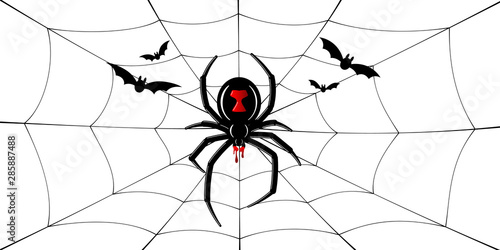 Spider Black Widow, cobweb, bats Canvas Print