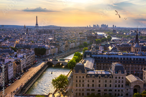 Poster de jardin Paris Paris, France, Seine river cityscape in summer colors with birds flying over the city. Paris city aerial panoramic view. Paris is the capital and most populous city of France. Postcard of Paris.