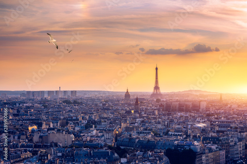 Garden Poster Paris Paris, France, Seine river cityscape in summer colors with birds flying over the city. Paris city aerial panoramic view. Paris is the capital and most populous city of France. Postcard of Paris.
