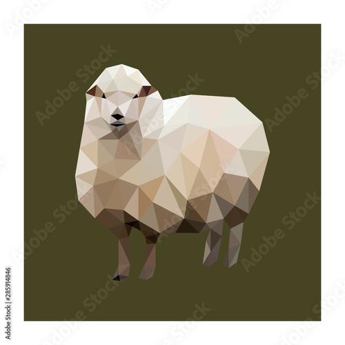 Fotografija Colorful polygonal style design of sheep
