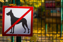 The Prohibition Sign That Dogs...