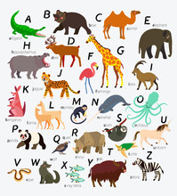 Animal Alphabet For Children A...