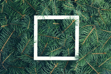 Closeup Of Christmas Tree Branches As Background, Top View