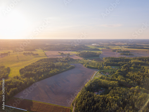 Photo  Aerial view of beautiful green forest, Latvia