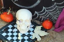 Halloween Composition Of Skull...