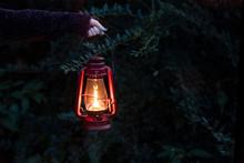 Girl Holding A Lit Lantern In ...