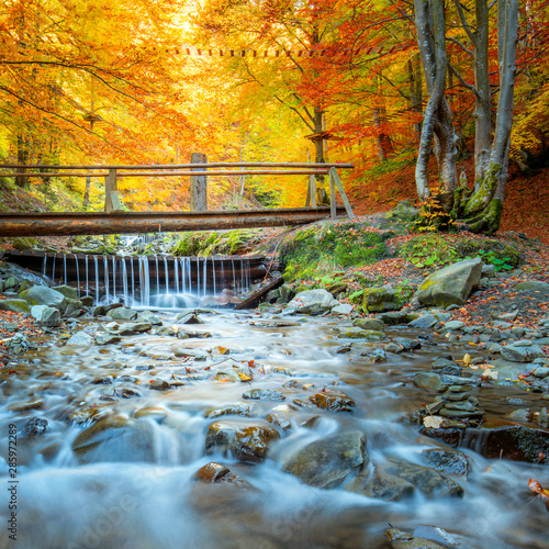Obraz na ścianę wodospad   autumn-in-forest-park-colorful-trees-small-wooden-bridge-and-fast-river-with-stones