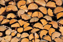Pile Of Wooden Logs, Sawn Ends View