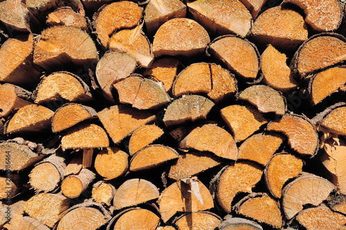 Pile of wooden logs, sawn ends view #285986464