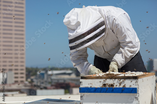 Photo Beekeeper on the roof