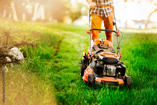 Poster Miel Close up details of mowing the lawn with manual machinery