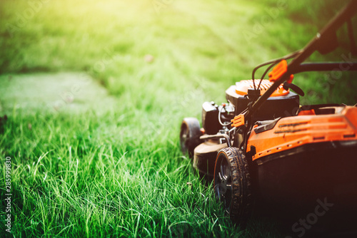 Photo  cutting the grass in backyard. Gardening and landscaping concept