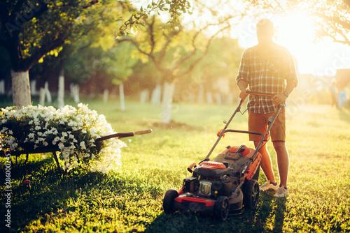 Slika na platnu Gardening and garden maintainance, industrial gardener using lawnmower and cutting grass in garden
