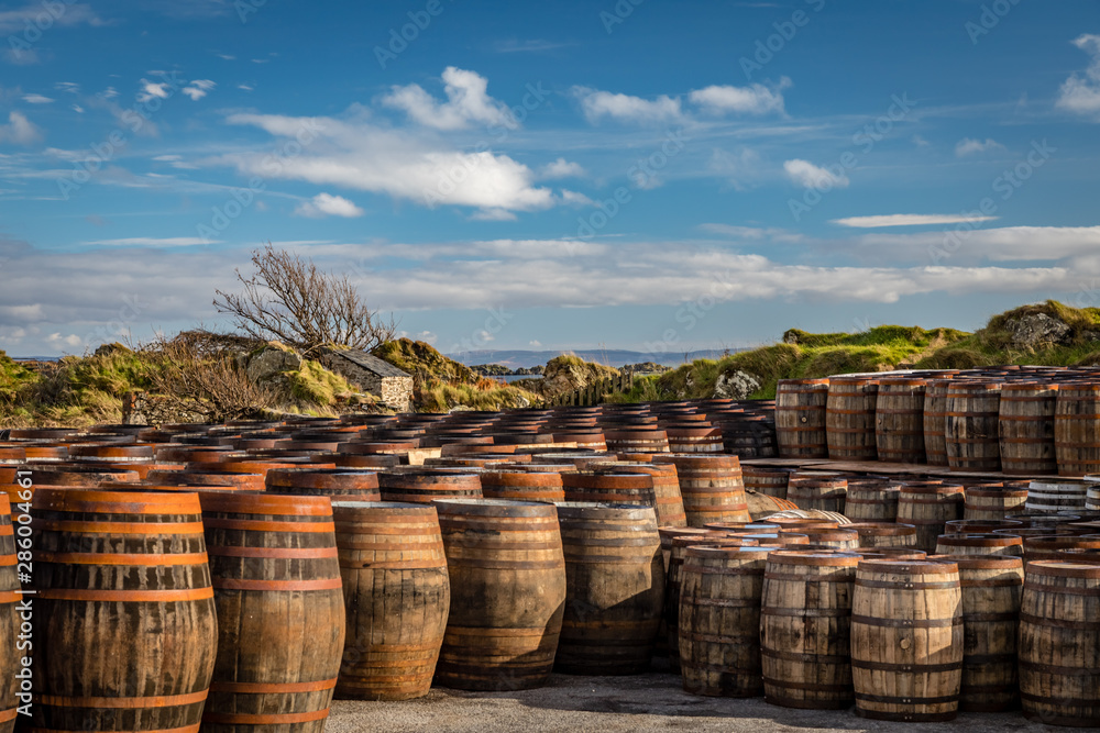Fototapeta Rows of used whiskey barrels of graduating sizes sit in front of windswept coastal grassy hills below deep blue skies at Ardbeg Distillery in Scotland
