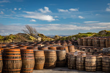 Rows Of Used Whiskey Barrels O...