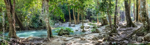 Photo sur Aluminium Olive Panorama of bare tree roots and a series of beautiful short waterfalls in the dense forest of Erawan National park in Thailand