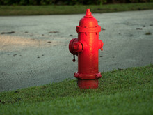 A Red Fire Hydrant On Cut Grass Next To A Paved Street.