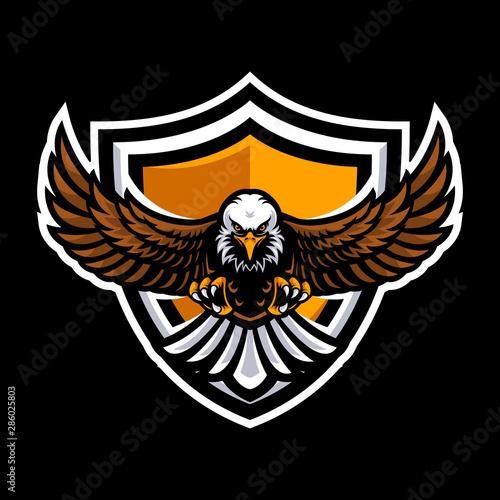 Eagle logo for a sport team Canvas Print