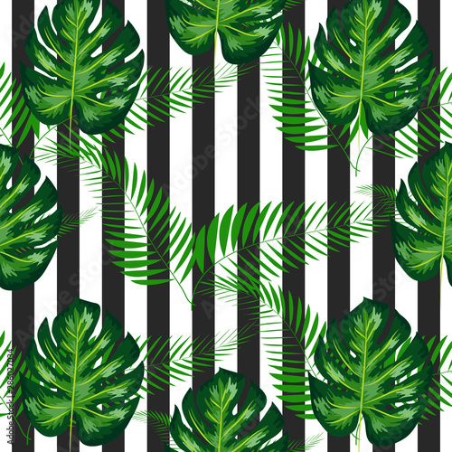 Fototapety, obrazy: exotic seamless pattern with monstera palm leaves. Tropical hawaiian textile botanical design. Floral backdrop on the black white geometric background.