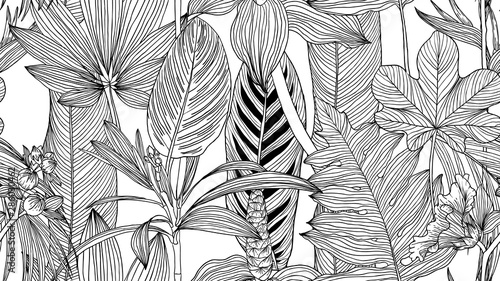 Fototapeten Künstlich Botanical seamless pattern, black and white tropical leaves and flowers line art ink drawing on white