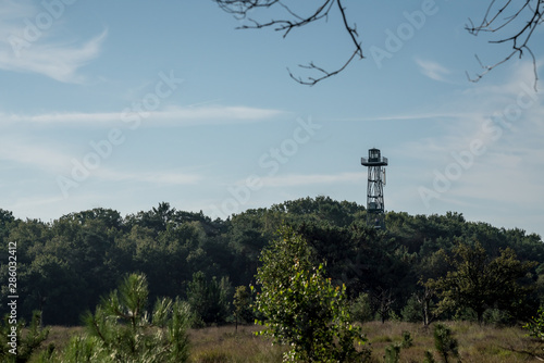 Valokuva  watchtower in the calmthout heath